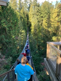 Capliano Suspension Bridge