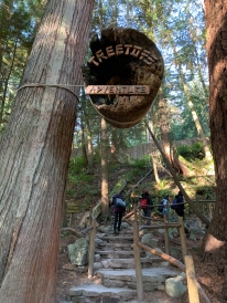 Capilano Tree House