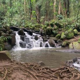 Wailua River Falls 6