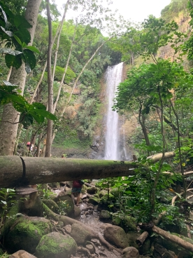 Wailua River Falls 8